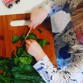 Spinach cutting
